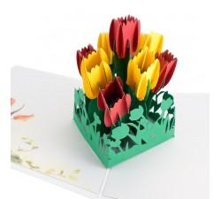 3D želanie - Tulipány