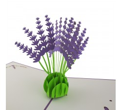 3D přání - Levandule
