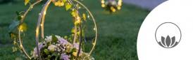 Kvetogula